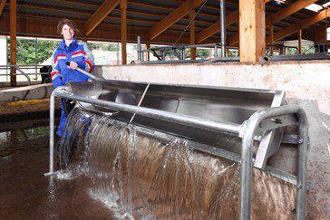 водопойный желоб для коров / с лотком / из нержавеющей стали / мультидоступ