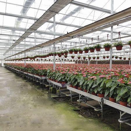 Садоводческий стол регулируемый по высоте - Sunmax Greenhouse Technology  Co., Ltd.