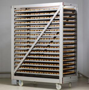 инкубационный ящик для яиц