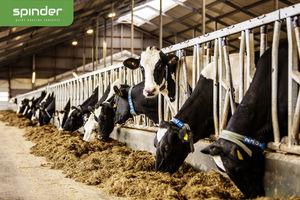 кормовая решетка для коров