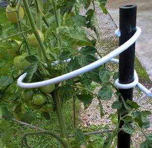 опора для растений из пластика