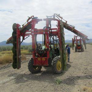 машина для срезания веток для деревьев / для установки на трактор / горизонтальная / дисковая