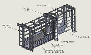 ворота для сортировки животных для коров