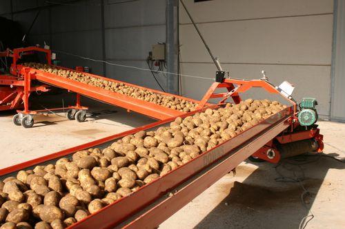 Конвейер с картошкой в ленточные конвейеры особенности конструкции