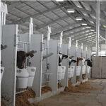 будка для разведения скота