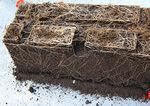 субстрат растений почва для горшечных культур / в мешке / для экологического сельского хозяйства / для грибов