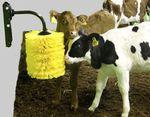 щетка для разведения скота