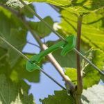 скоба для виноградников