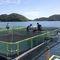 сеть для рыбной ловли для разделения резервуара с водой / из полиэтиленаAGRONEW CO., LTD