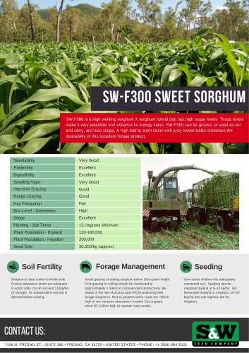SW-F300 sweet sorghum