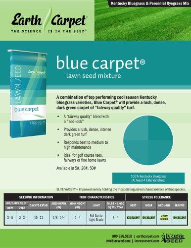 blue carpet®