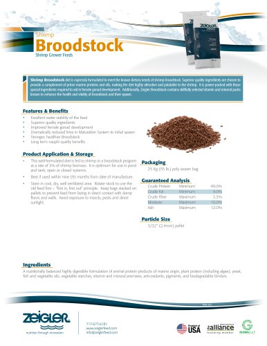 Shrimp Broodstock